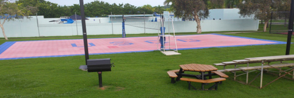 volleyballcourt_x